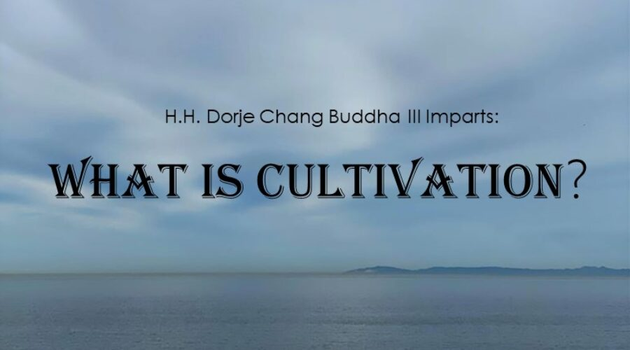 The Dharma of Cultivation