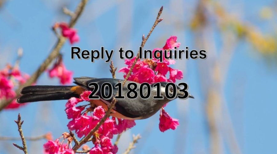Reply to Inquiries No. 20180103