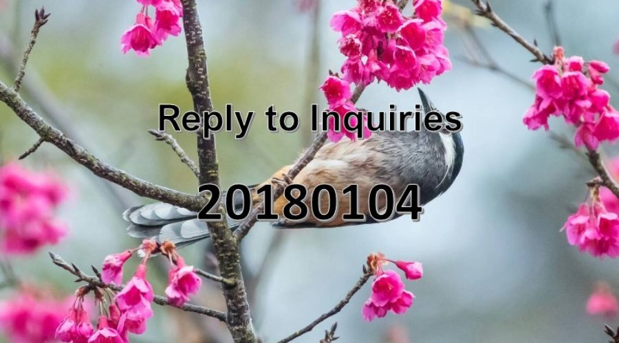 Reply to Inquiries No. 20180104