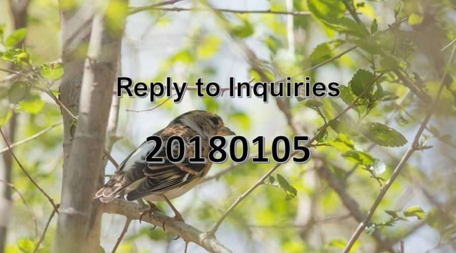 Reply to Inquiries No. 20180105